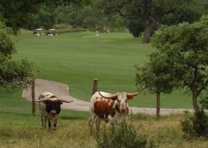 Canyon Springs Golf Golf Club (Image: Canyon Springs)