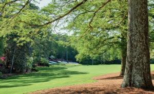 Augusta National Hole No. 13 (Image: Masters.com)